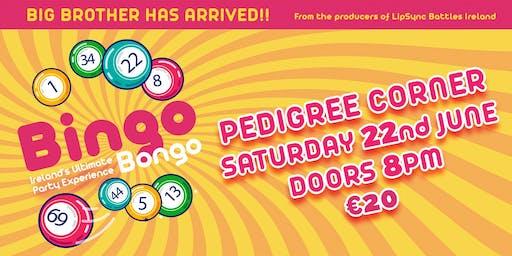 Pedigree Corner-Bingo Bongo