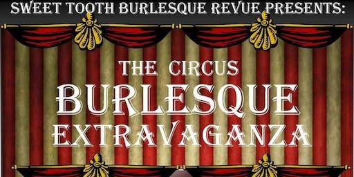 Scintillating Circus Extravaganza