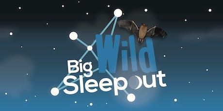 Big Wild Sleepout at RSPB Titchwell Marsh tickets