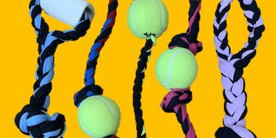 Eco-friendly Dog Toy Class & Sip