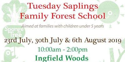 Saplings family forest school