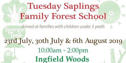 Saplings family forest school