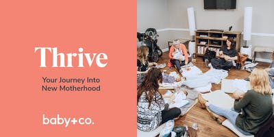 Thrive: Your Journey Into New Motherhood Class Series: Mondays 8/5 - 9/16