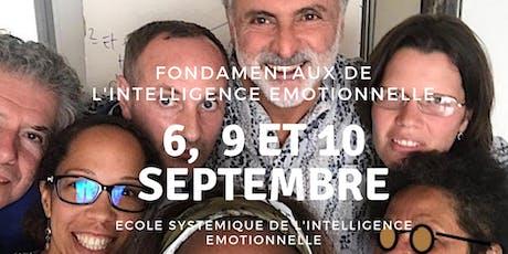 Fondamentaux de l'Intelligence Emotionnelle billets