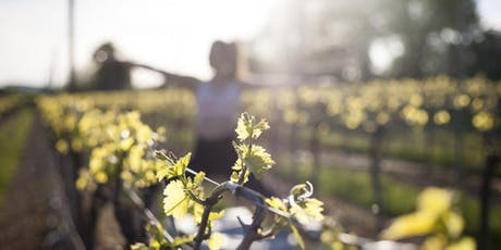 Fizz Friday's! Yoga in the Vineyard tickets