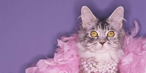 Burlesque Stage Kitten Workshop
