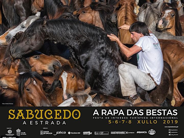 Imagen de A Rapa Das Bestas de Sabucedo 2019