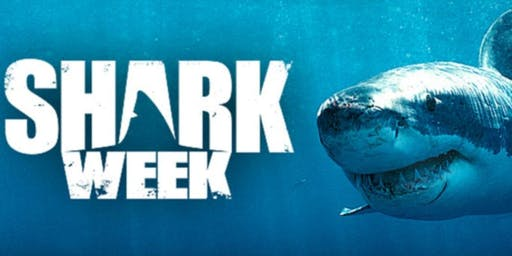 Shark Week Cake Camp: Make/Bake/Decorate & Take