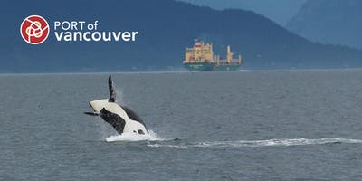 Helping to reduce shipping impacts on whales - July 24, 2019