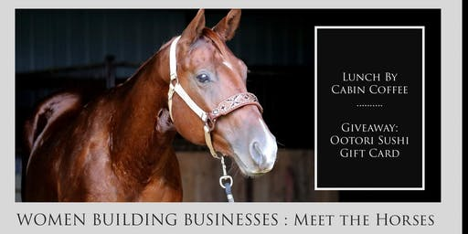 WOMEN BUILDING BUSINESSES:  Meet the Horses