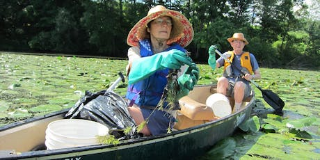 Paddle with a Purpose on the CT River in Holyoke (MA) - Water Chestnut Pulls tickets