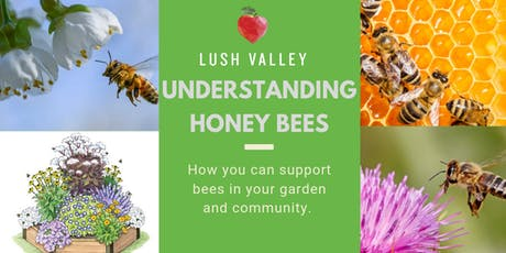 Understanding Honey Bees tickets