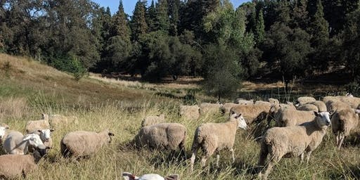 2019 Placer County Ag Tour