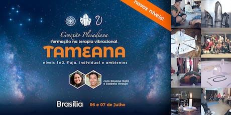 Formação em Terapia Vibracional Tameana - Brasília/DF ingressos