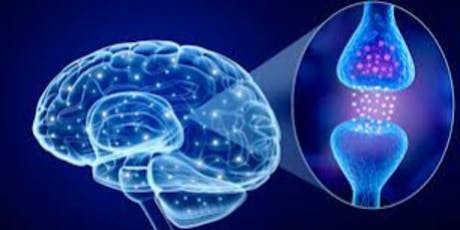 Florence Educational Event: Motor Fluctuations in Parkinson's  tickets