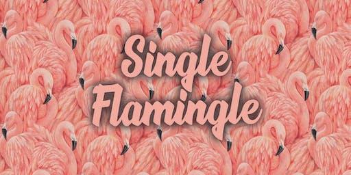 Single Flamingle at The Sacred Palm