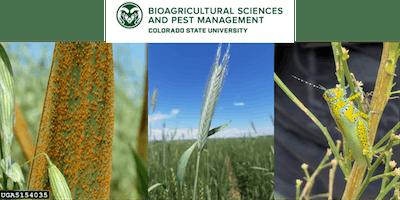 CSU New Innovations in Pest Management Symposium