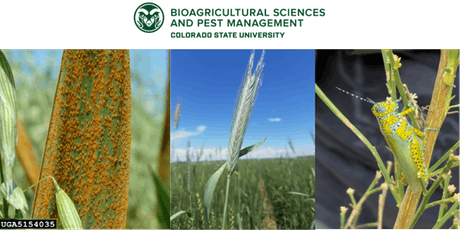 CSU New Innovations in Pest Management Symposium tickets
