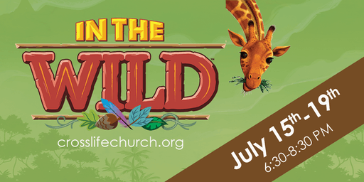 IN THE WILD! VBS