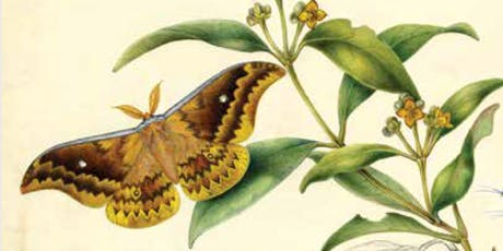 Butterflies and bushland - the influence of Helena Scott's work on current Landcare practices tickets