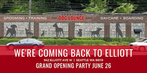 Grand Opening on Elliott  |  Downtown Dog Lounge