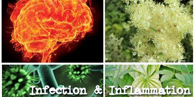 Infection & Inflammation for Herbalists - 2020