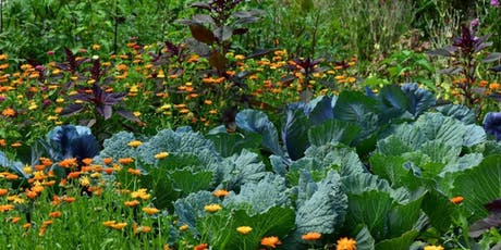 Introduction to Permaculture workshop tickets