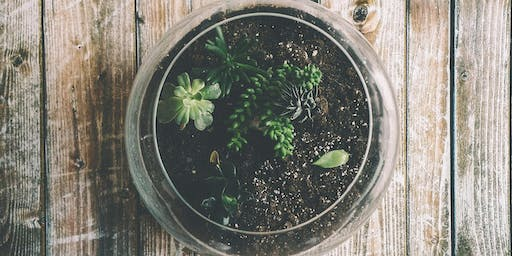 Green Living Kids: Upcycle Terrariums School Holiday Program at Kincumber Library