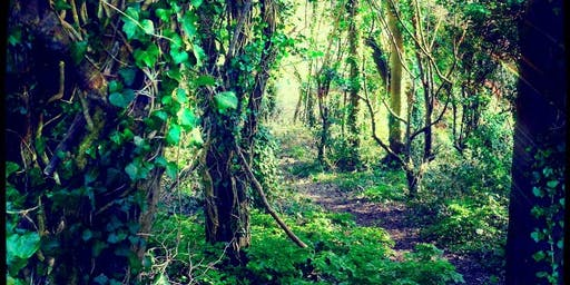 SRWF - Beware the Deep Dark Forest Storytime