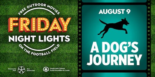 Downsview Park Friday Night Lights - A Dog's Journey