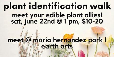 bushwick plant identification walk : maria hernandez park tickets