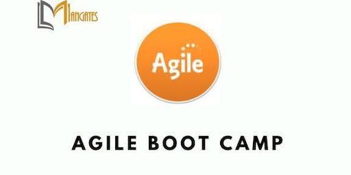 Agile 3 Days Virtual Live Boot Camp in Darwin