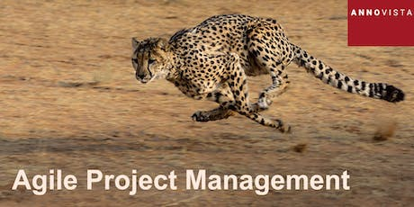 Agile Project Management - A 'Hands On' Introduction tickets