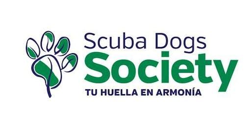 Monitoreo Microplástico Scuba Dogs Seven Seas Fajardo