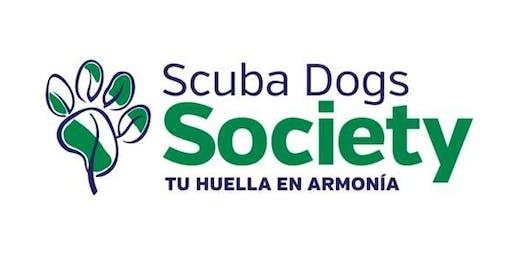 Monitoreo Microplástico Scubadogs Society playa Barba