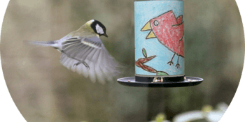 Gardening & Make your own Bird Feeder