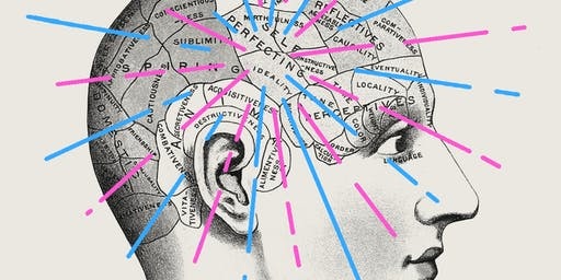 A Gendered Brain? Shattering Sexist Science