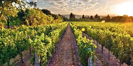 "Wine Night Networking - ""Off the Beaten Path"" Wines of Italy tickets"