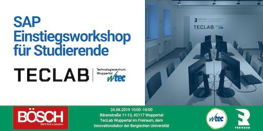Einstiegsworkshop SAP