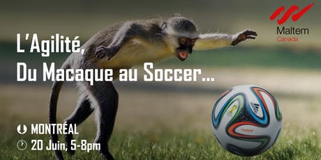 L'Agilité, du macaque au soccer ! tickets