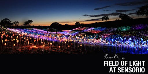 Sunday | November 10th - BRUCE MUNRO: FIELD OF LIGHT AT SENSORIO