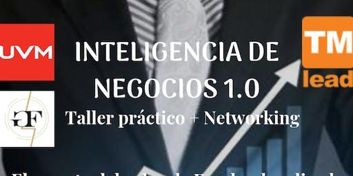 Inteligencia de Negocios 1.0
