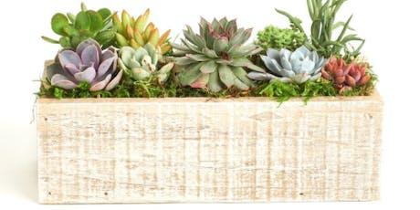 Succulent Garden Workshop tickets