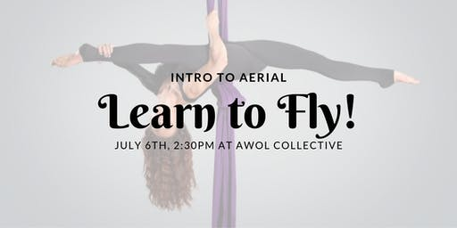 Learn to Fly: Intro to Aerial