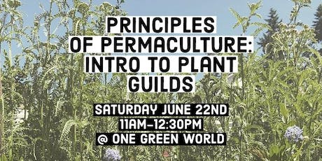 Principles of Permaculture: Intro to Plant Guilds tickets