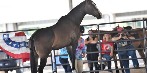 3rd Florida Thoroughbred Expo
