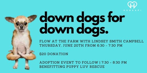 Down Dogs for Down Dogs: Yoga Flow at Hunkapi Farms