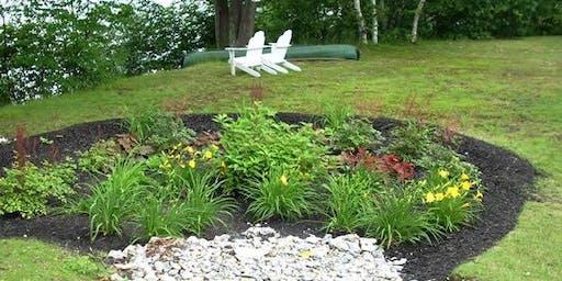 Rain Gardens: Beautiful & Functional