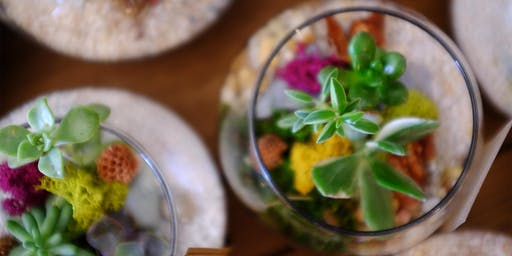 DIY Terrarium Workshop - July Dates