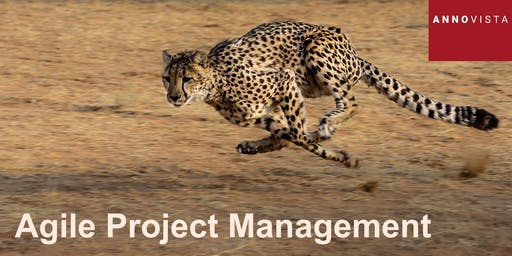 Agile Project Management - A 'Hands On' Introduction